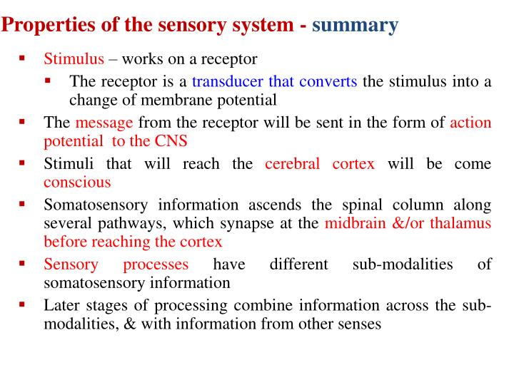 Properties of the sensory system -