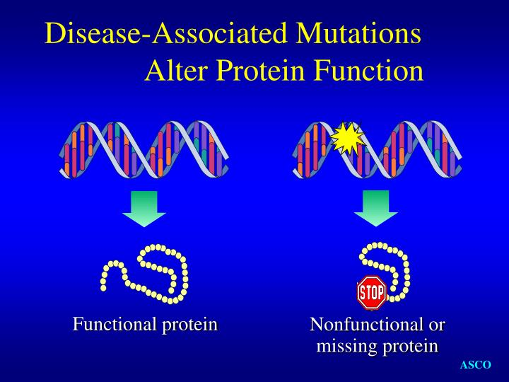 Disease-Associated Mutations Alter Protein Function