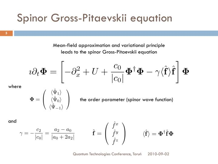 Spinor Gross-Pitaevskii equation