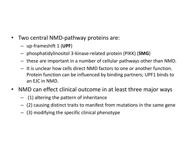 Two central NMD-pathway proteins are: