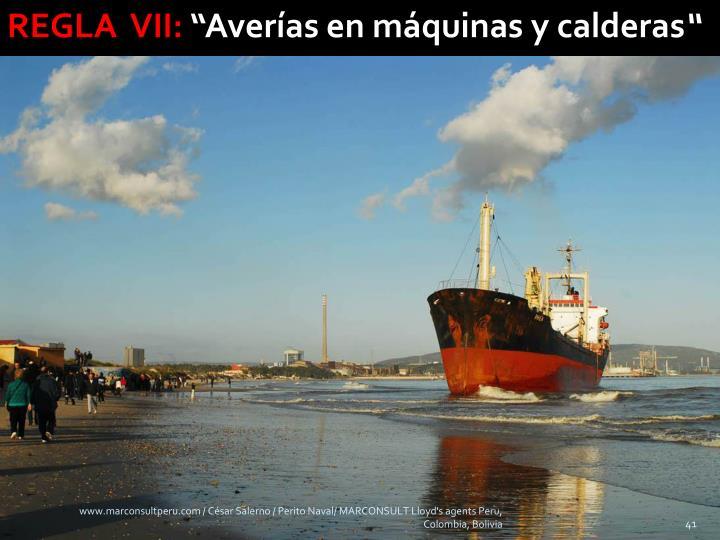 REGLA  VII: