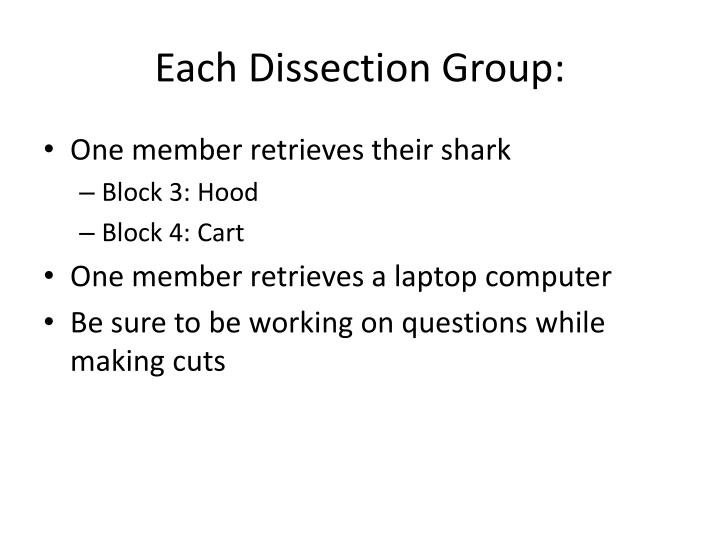 Each Dissection Group: