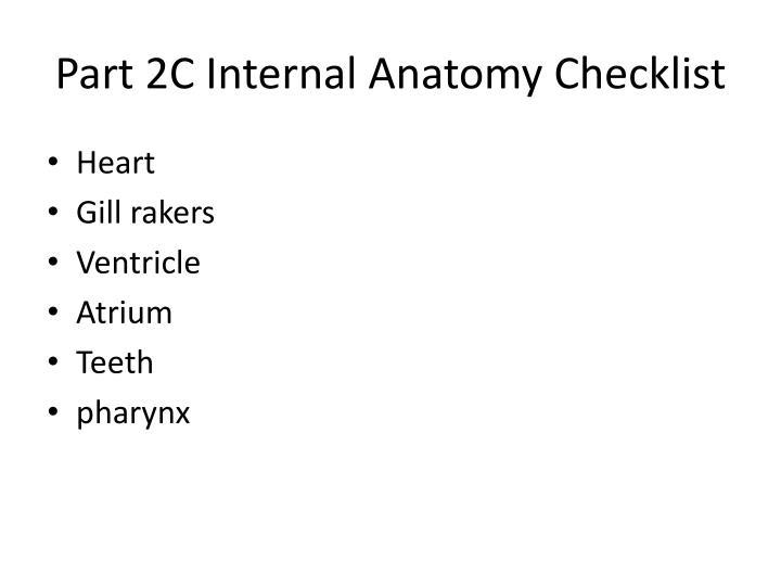 Part 2C Internal Anatomy Checklist
