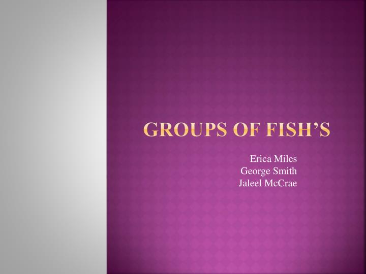 Groups of Fish's