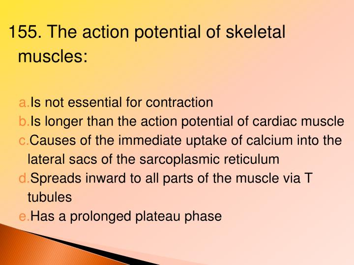 155. The action potential of skeletal muscles: