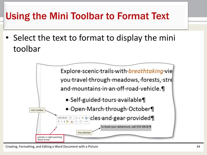 Using the Mini Toolbar to Format Text