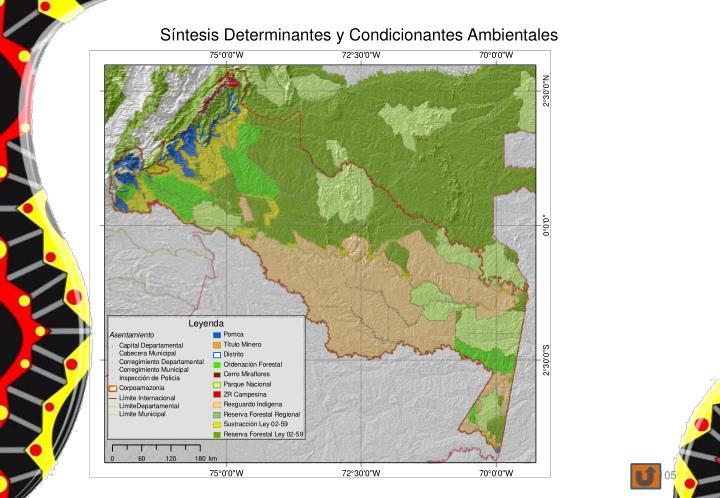 Síntesis Determinantes y Condicionantes Ambientales