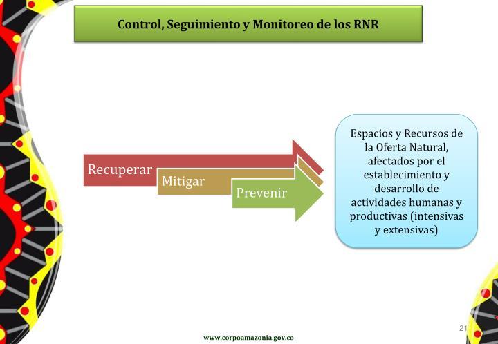 Control, Seguimiento y Monitoreo de los RNR