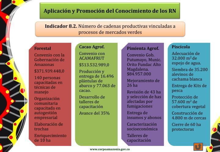 Aplicación y Promoción del Conocimiento de los RN