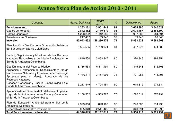 Avance físico Plan de Acción 2010 - 2011