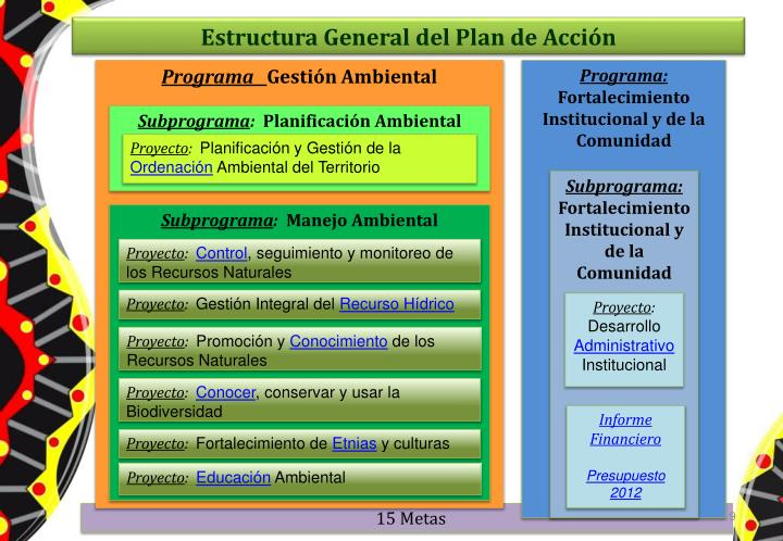 Estructura General del Plan de Acción