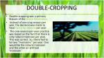 double cropping
