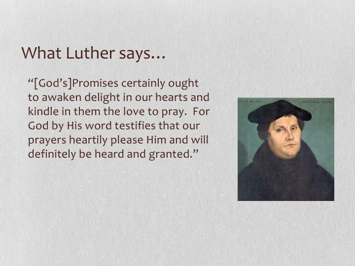 What Luther says…