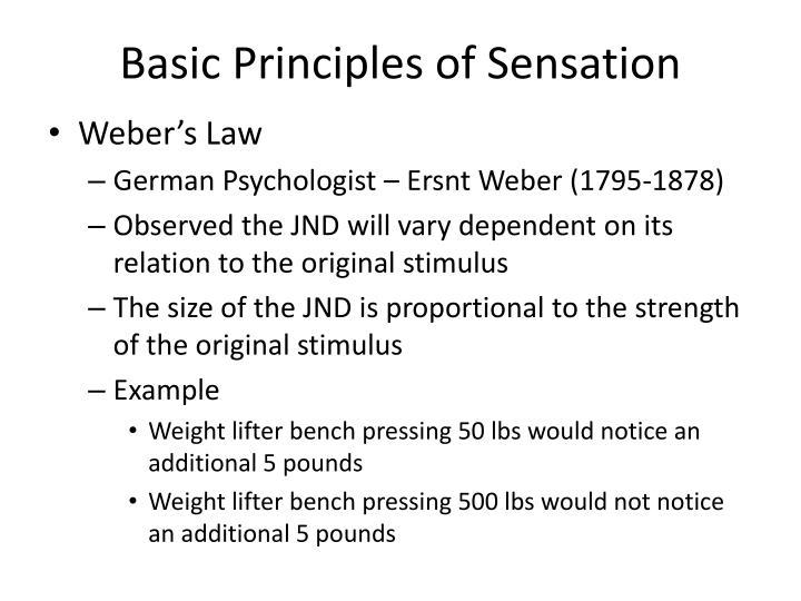 Basic Principles of Sensation
