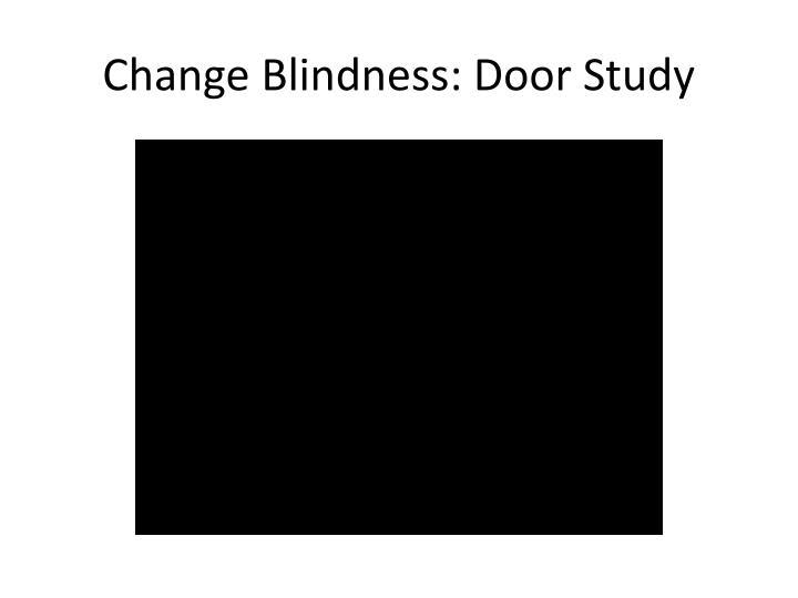 Change Blindness: Door Study
