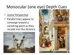 monocular one eye depth cues
