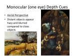 monocular one eye depth cues1