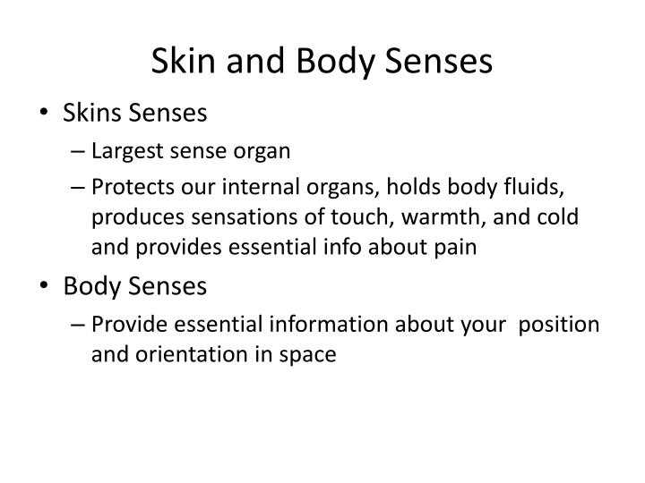 Skin and Body Senses