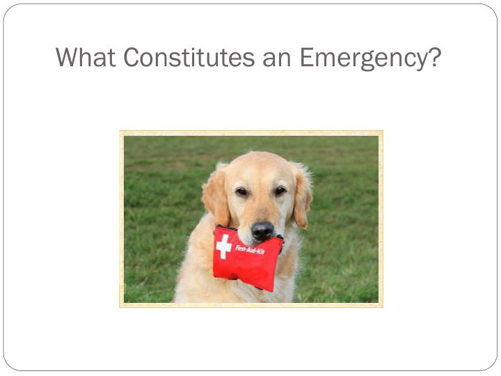 What Constitutes an Emergency?