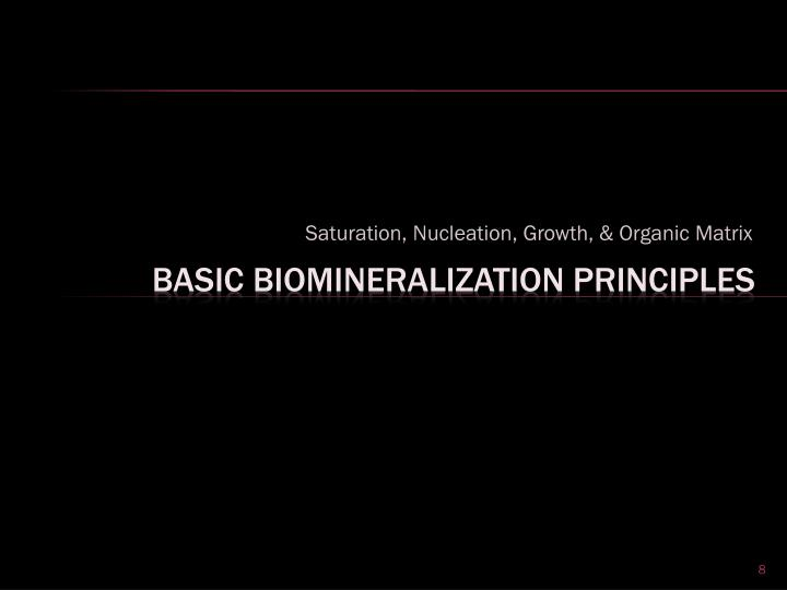 Saturation, Nucleation, Growth, & Organic Matrix
