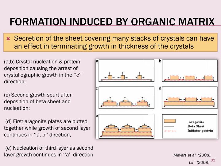 Formation induced by Organic Matrix
