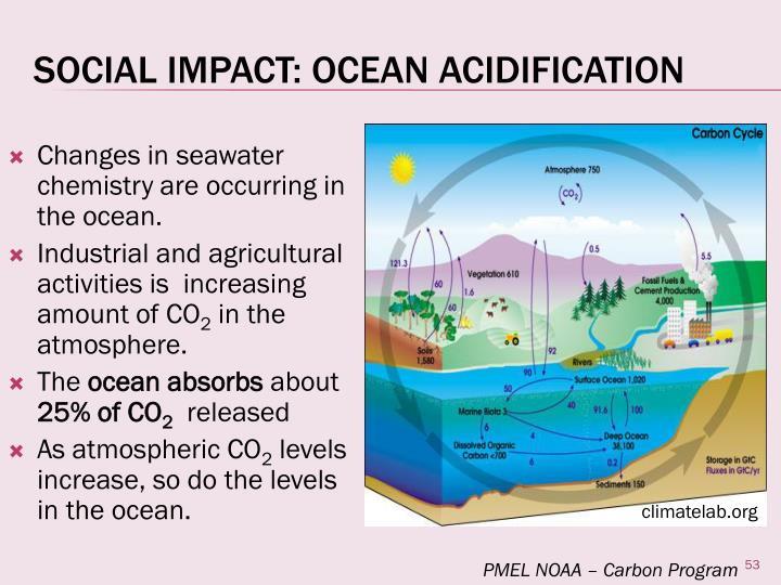 Social Impact: Ocean Acidification