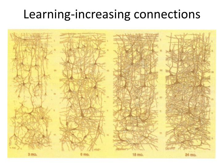 Learning-increasing connections