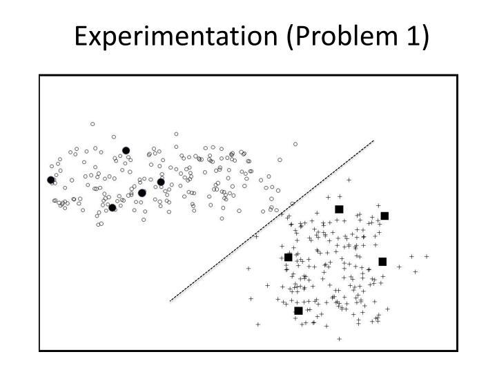 Experimentation (Problem 1)