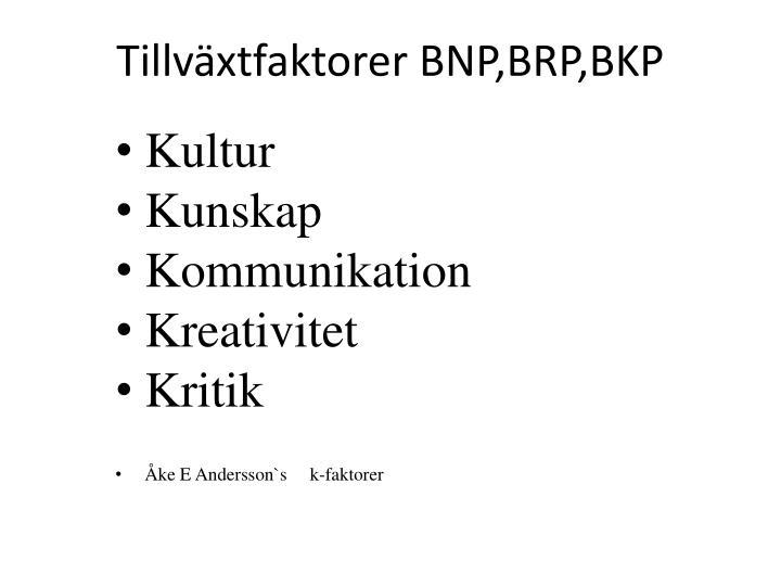 Tillväxtfaktorer BNP,BRP,BKP