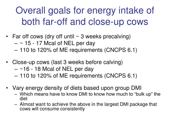 Overall goals for energy intake of both far-off and close-up cows