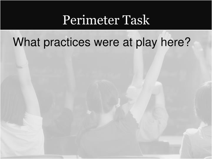 Perimeter Task
