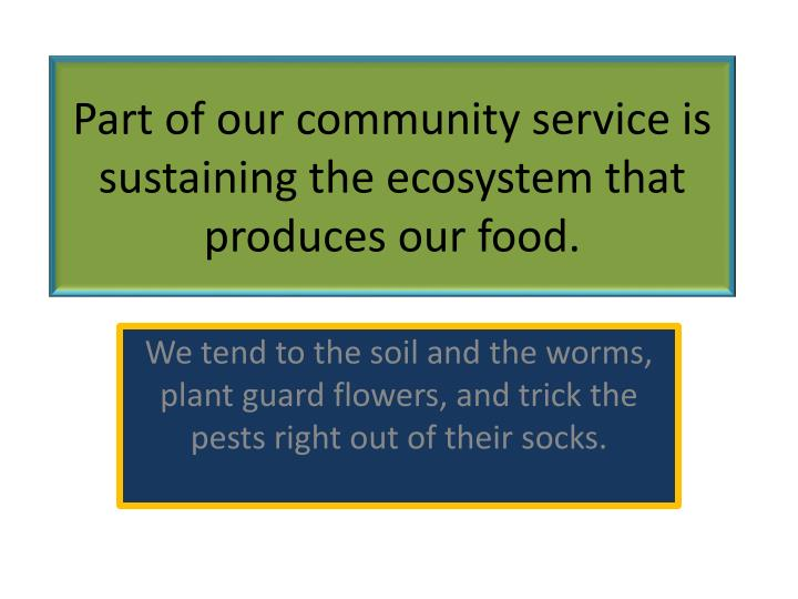 Part of our community service is sustaining the ecosystem that produces our food.