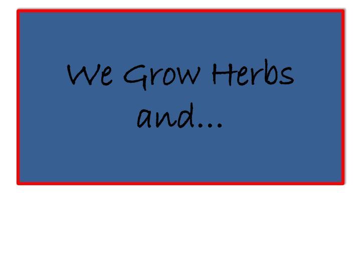 We Grow Herbs