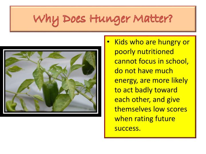 Why Does Hunger Matter?