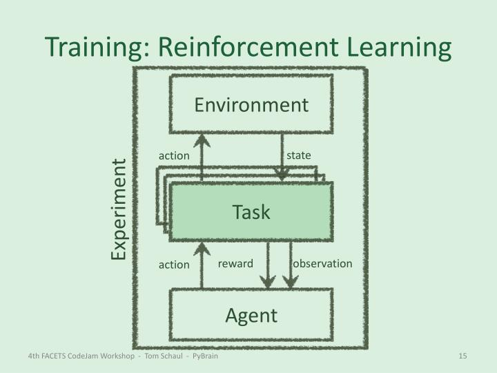 Training: Reinforcement Learning