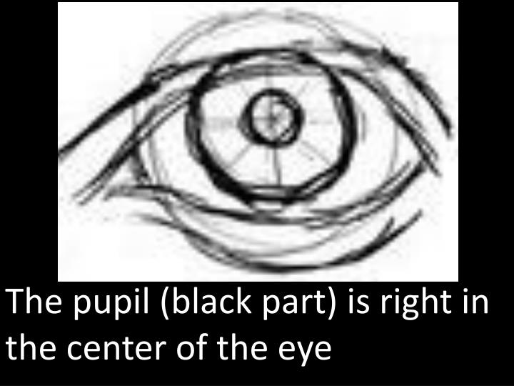 The pupil (black part) is right in the center of the eye