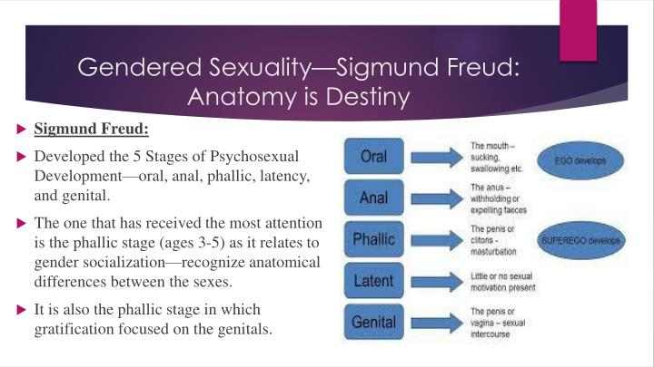 Gendered Sexuality—Sigmund Freud: Anatomy is Destiny