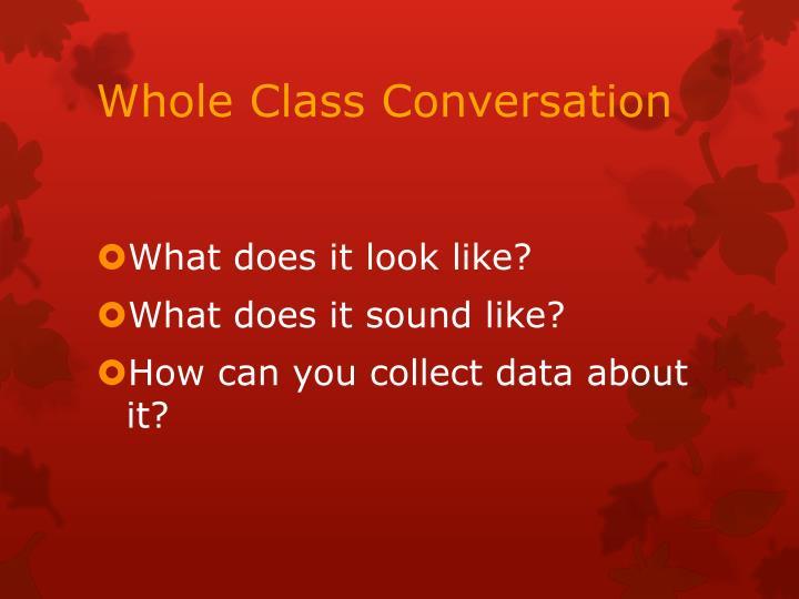 Whole Class Conversation