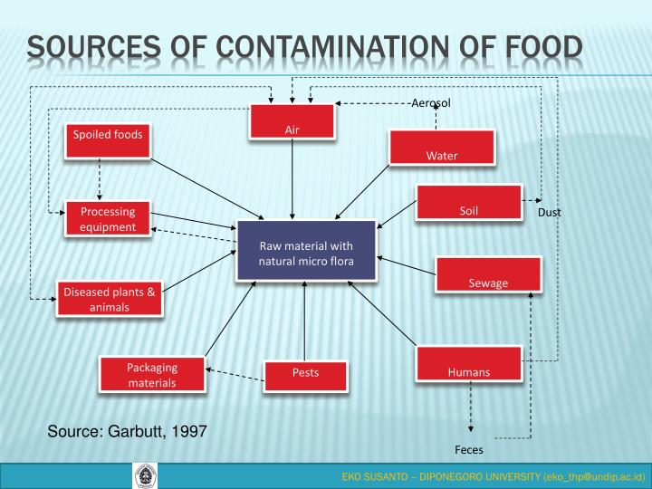SOURCES OF CONTAMINATION OF FOOD