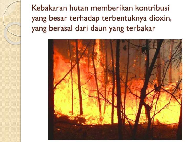 Kebakaran hutan memberikan kontribusi yang besar terhadap terbentuknya dioxin, yang berasal dari daun yang terbakar