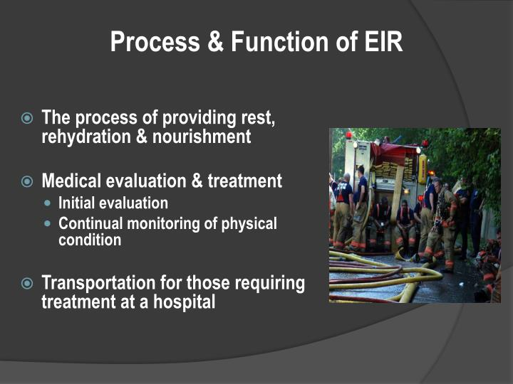 Process & Function of