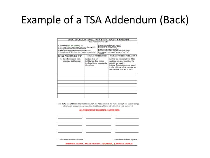 Example of a TSA Addendum (Back)