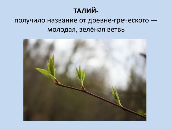 ТАЛИЙ-