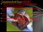 cocaine and your heart