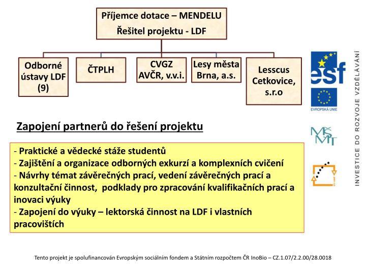 Zapojení partnerů do řešení projektu
