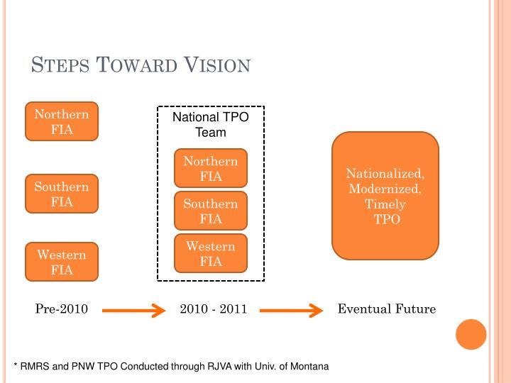 Steps Toward Vision
