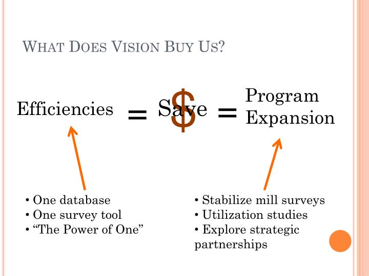 What Does Vision Buy Us?