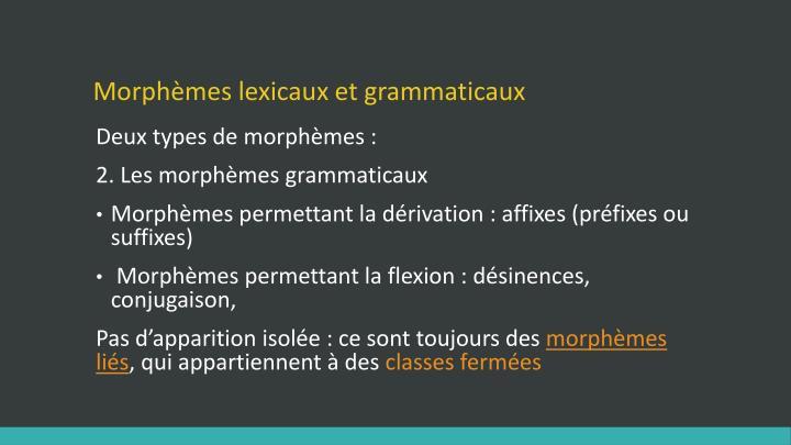 Morphèmes lexicaux et grammaticaux