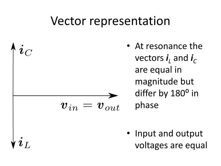 Vector representation