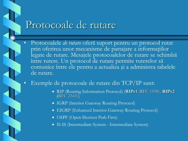 Protocoale de rutare